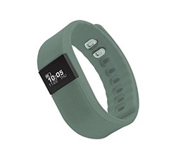 Picture of Zebronics Fit100 Fitness Band (Grey)