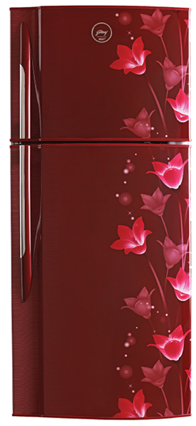 Picture of Godrej 240 Litres RT EON 255B 25 HI Magic Wine Frost Free Double Door Refrigerator