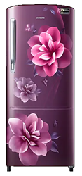 Picture of Samsung 192Litres RR20A172YCR Single Door Refrigerator